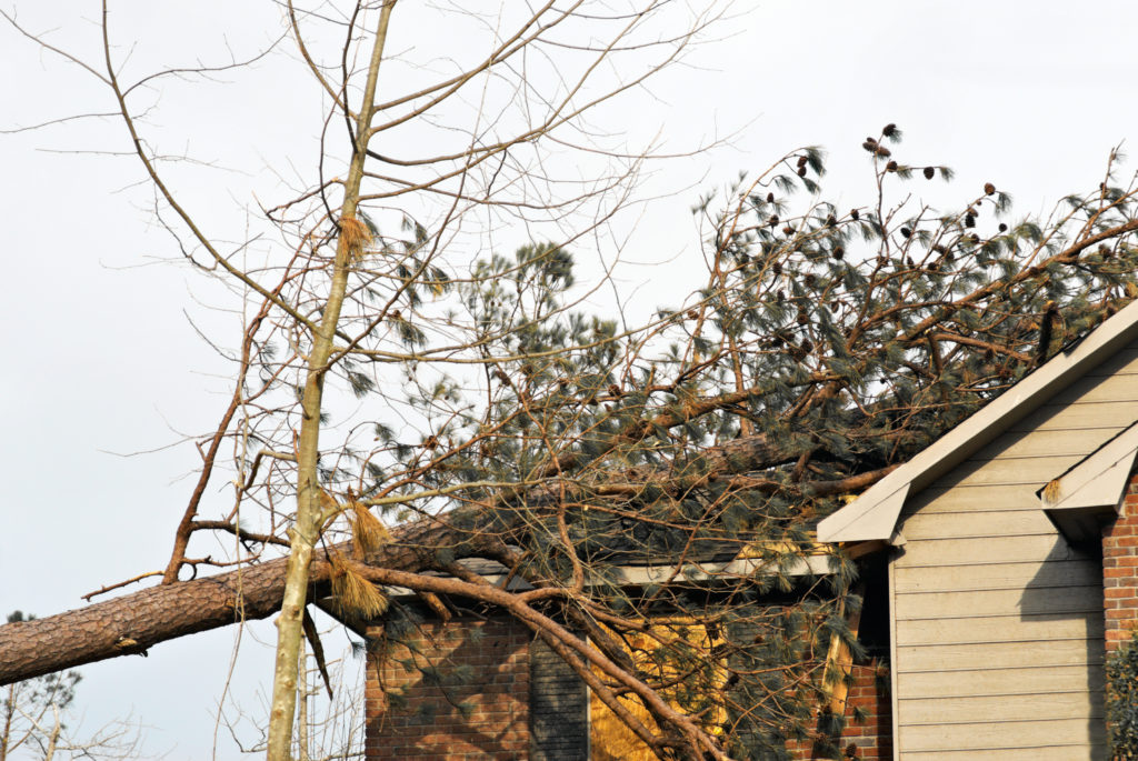 Engineering Specialists, Inc. offers forensic evaluations of all types of storm damage claims.