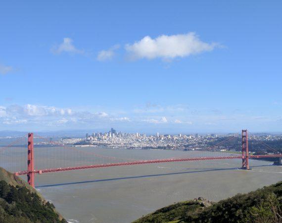 How a suspension bridge works