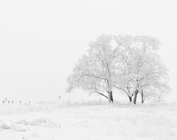 Winter storms in Oregon – February 2021
